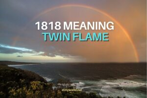 1818 meaning Twin Flame