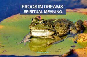 spiritual meaning of frog in a dream