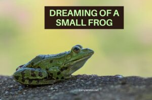 dreaming about frog meaning
